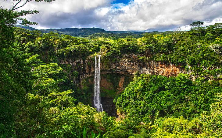 Waterfall Jungle Forest HD Wallpaper